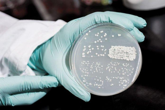 cazuri de infectii nosocomiale