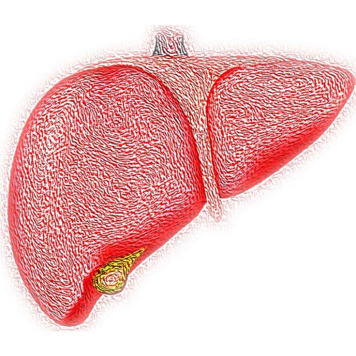 Ziua Mondială de Luptă împotriva Hepatitei