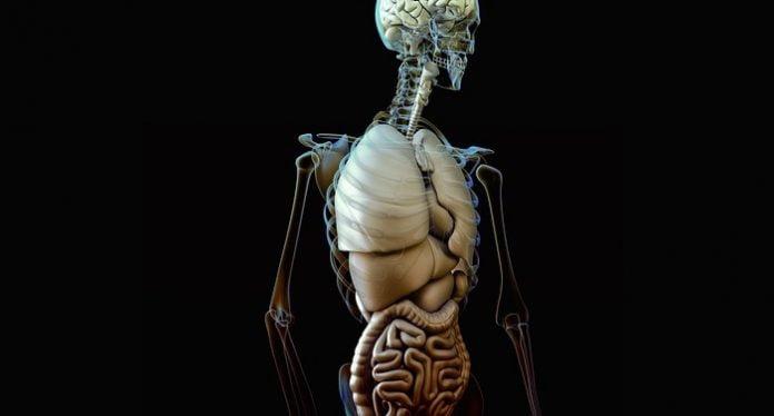 Centrul de Prelevare de Organe