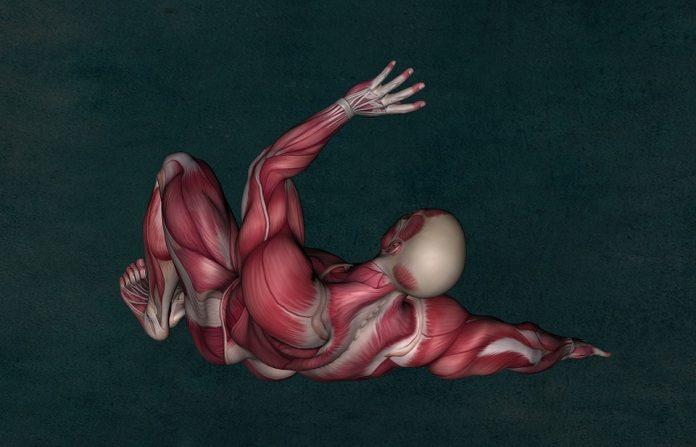 miastenia autoimună gravis